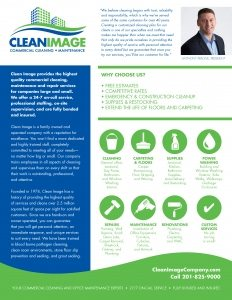 Cleaning Company Services Flyer Graphic Design