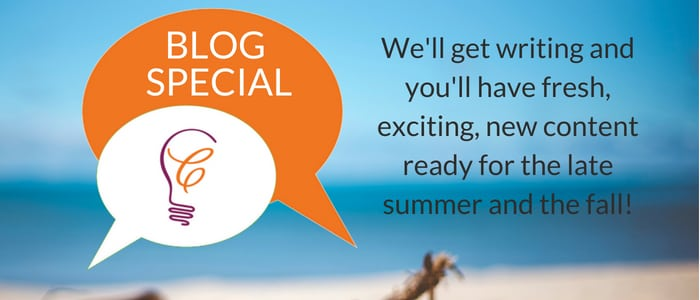 Blog Writing Summer Special Offer